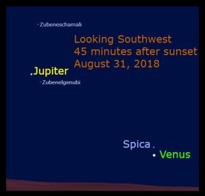 August 31: A Venus-Spica Conjunction. Venus appears 1.2° below Spica.