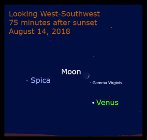 The waxing crescent moon appears above Venus and near the star Gamma Virginis in the early evening sky. Venus and Spica are 16° apart.