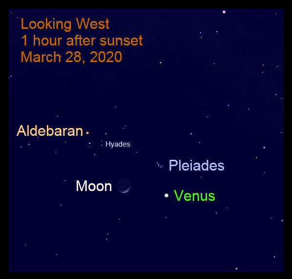 March 28, 2020: Venus, the crescent moon, and the Pleiades Cluster are near each other.