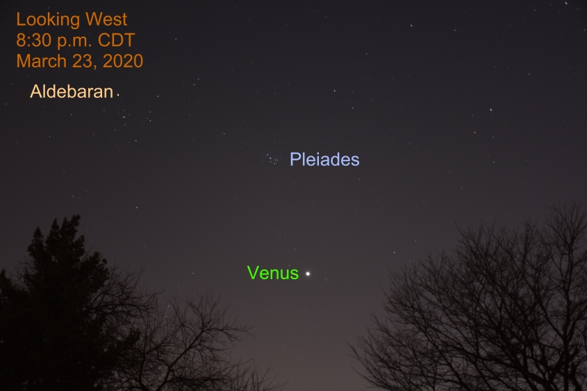 Venus and Pleiades, March 23, 2020