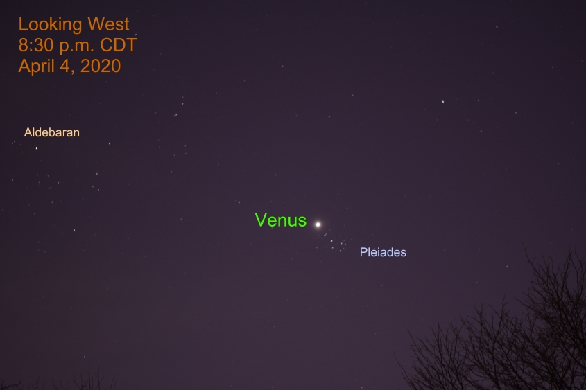 Venus and Pleiades, April 4, 2020