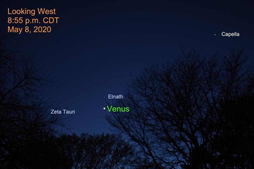 Venus and Elnath, May 8, 2020