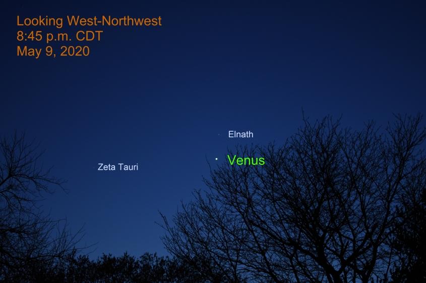 Venus and Elnath, May 9, 2020