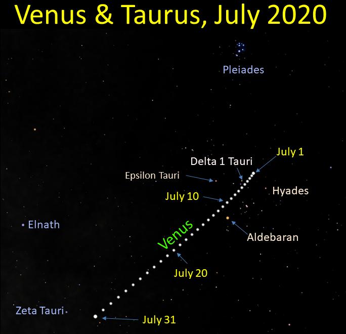 Venus in Taurus 2020