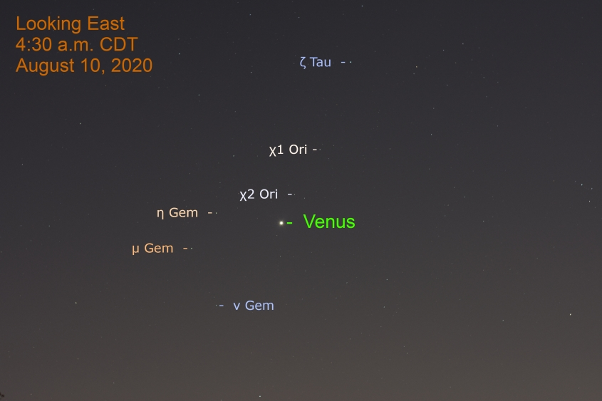 Venus in Orion, August 10, 2020