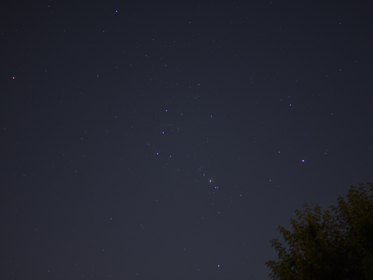 Orion Rising, September 4, 2020