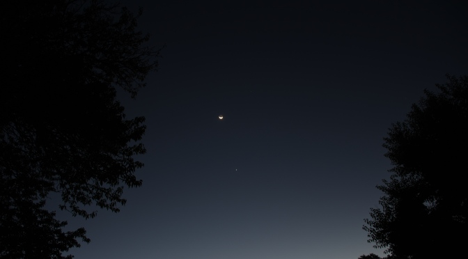 2020, November: Brilliant Morning Star Venus and Mercury