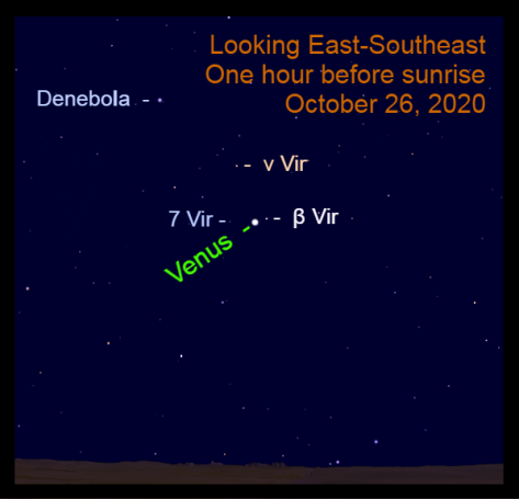 Venus in Virgo. October 26, 2020.